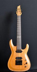 Guitare électrique 7 cordes - Face 2